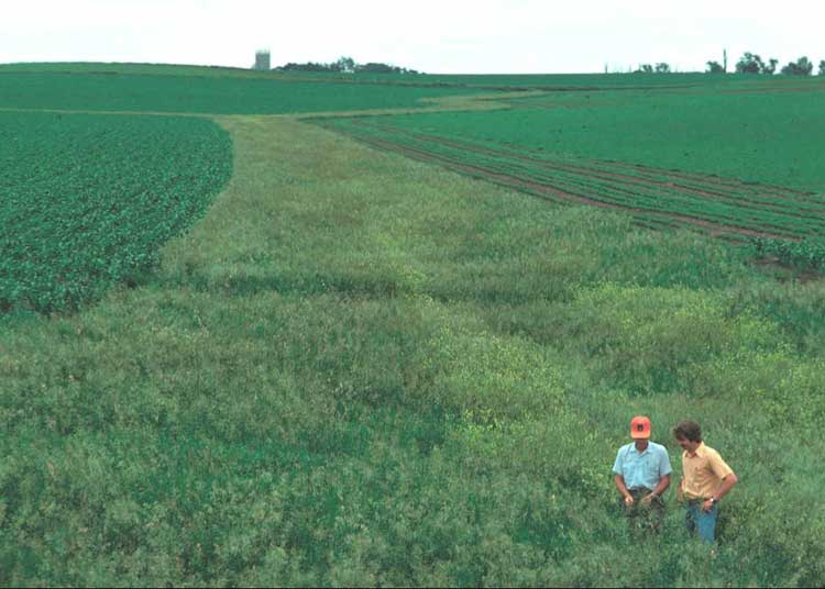 Minnesota River Basin Best Management Practices